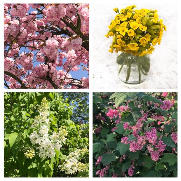Springtime .jpg