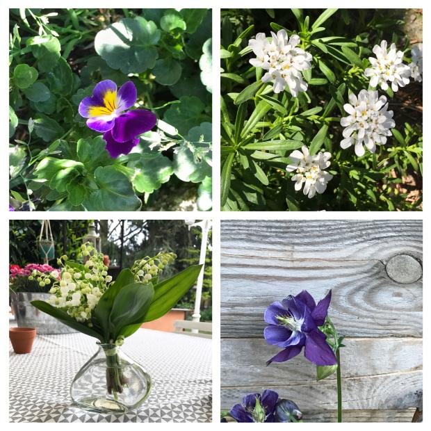 Fleurs de mai 1.jpg