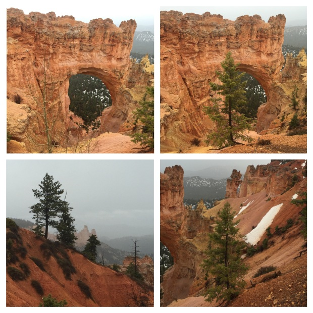Parc National De Bryce Canyon, Kanab, 17.jpg