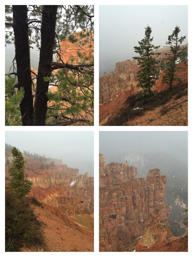 Parc National De Bryce Canyon, Kanab, 20.jpg