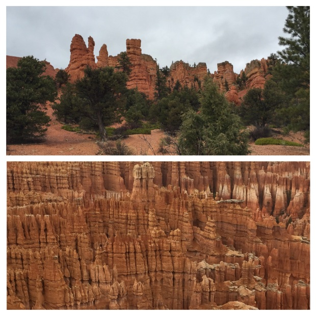 Parc National De Bryce Canyon, Kanab, 39.jpg