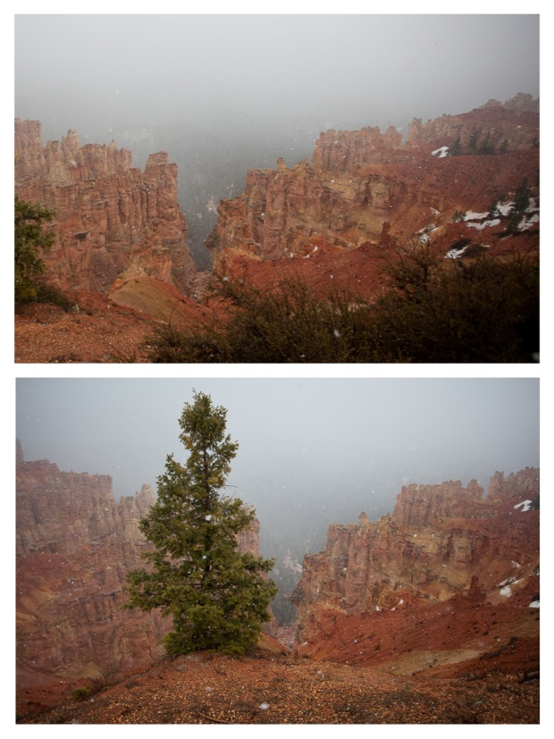 Parc National De Bryce Canyon, Kanab, 5.jpg